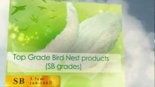 [NPQ] Bird Nest Supplier, Malaysia - Nest World