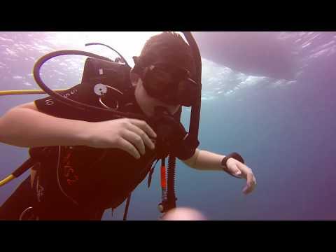 Scuba Diving - Belize Dive #2 - Dec 26, 2017