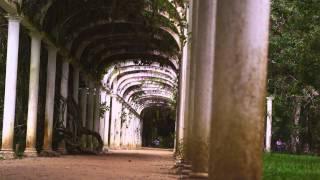 Slow Panning Shot Of Botanical Gardens In Rio.