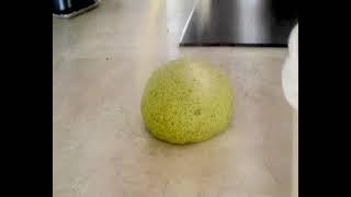 Une galette aux herbes typiquement kabyle préparée avec de la menth...