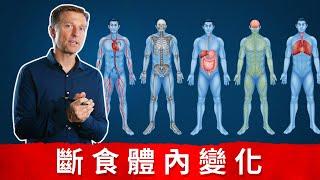 斷食體內變化抗衰老、自噬、燃燒脂肪、強化免疫力、癒合腸道關節炎等 Dr Eric Berg.