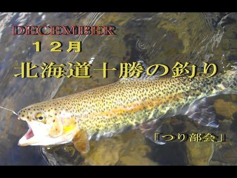 2016.12.3 「つり部会」 12月北海道十勝のニジマス釣り  まだまだ釣れます。