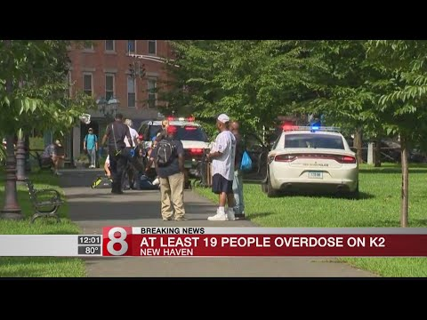 At least 20 people overdose on K2 on the New Haven Green
