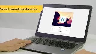 AXIS C8033 Pont Audio vidéo