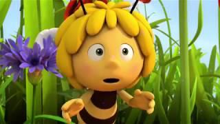Пчелка Майя Новые приключения Бал бабочек 13 серия