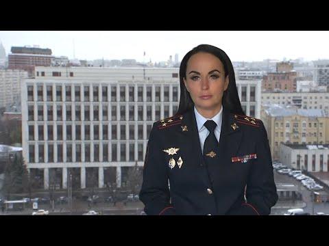 В двух регионах России полицейские пресекли мошенничества в сфере автострахования