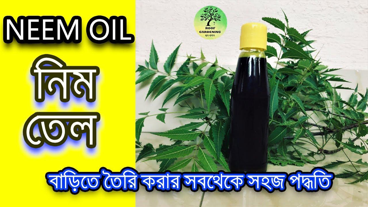 বাড়িতে নিম তেল বানানোর সবথেকে সহজ পদ্ধতি / How to make Neem Oil at home easily ( English Subtitle )