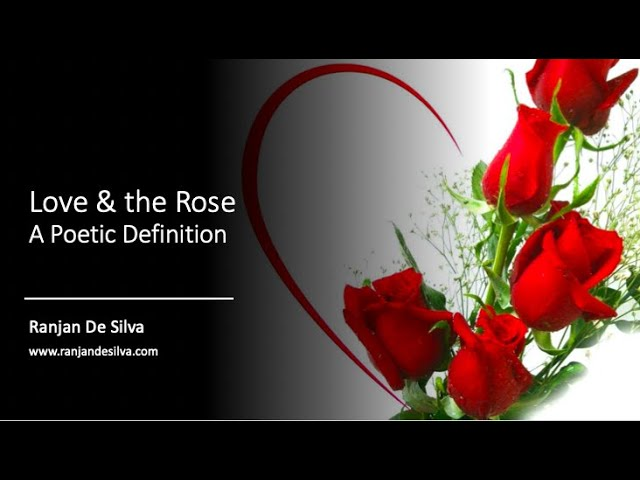 Love & the Rose   A Poetic Definition of Love