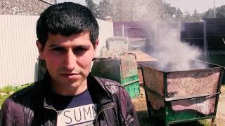 видео Новый год в Абхазии: особенности отдыха