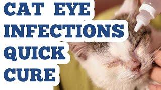 CAT EYE INFECTION CURE HINDI/URDU