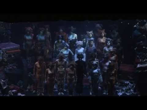 Jellicle Cats from Cats