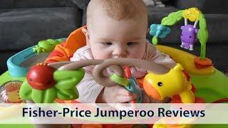 0b3c669a9924 Rainforest Jumperoo Review