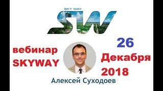 26.12.2018г. Вебинар SkyWay. Рынки, тренды и новшества SkyWay в 2019 году.