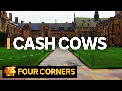 Cash Cows: Australian universities making billions out of international students   Four Corners