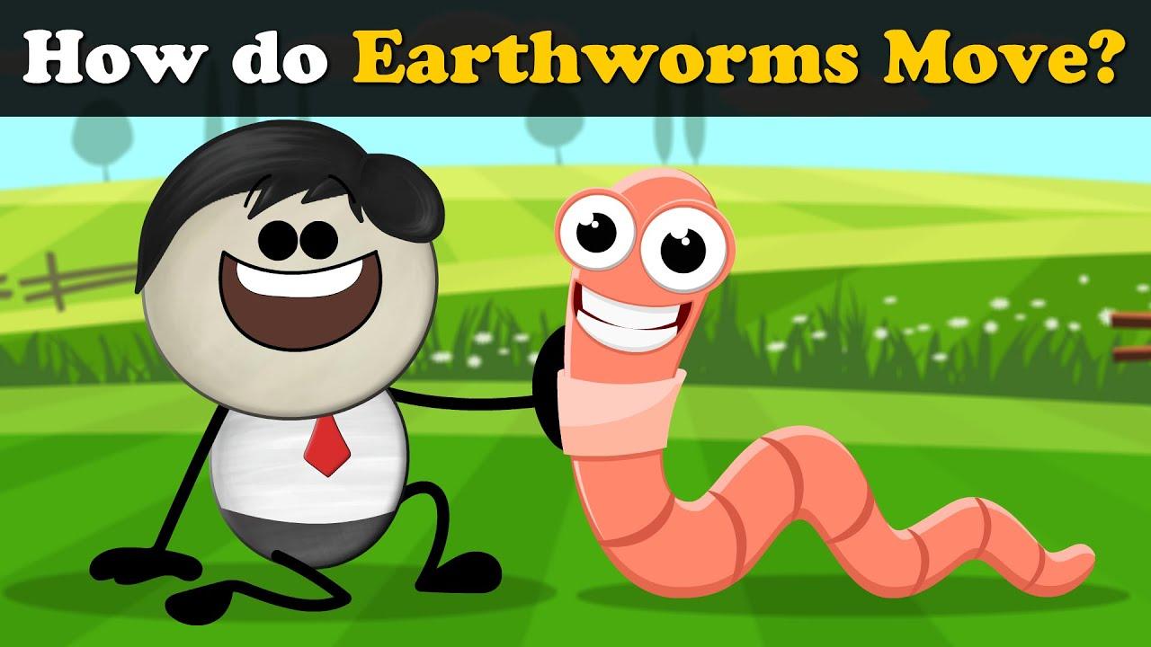 How do Earthworms Move? + more videos | #aumsum #kids #science #education #children