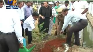 Kadapa Joint Collector Swetha Plants a Sapling at Kadapa