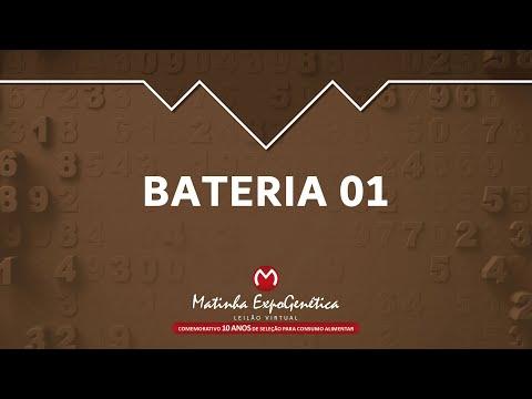 BATERIA 01 MATINHA EXPOGENÉTICA 2021