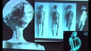 Inna Historia Świata: Mumie z Nazca