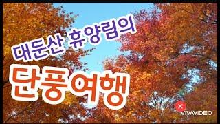 대둔산 자연휴양림, 전북여행, 완주여행, 단풍여행, 힐…