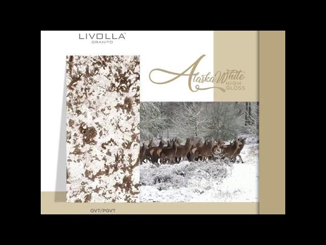 Alaska White | Livolla Granito LLP