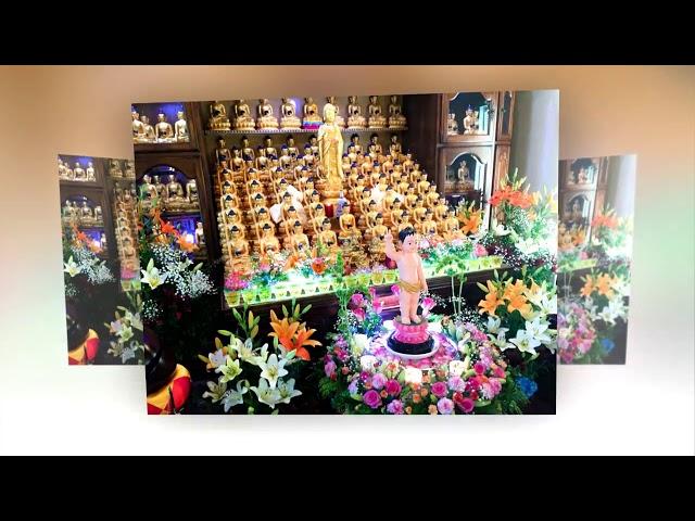 Truyền Bá Phật Pháp