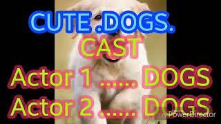 Dogs all breeds cute all dog breeds. Labrador Retriever. Purebred. Origin: Canada, USA. German Sheph