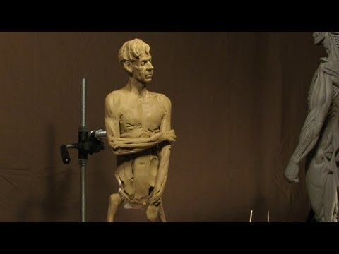 Sculpting With Lemon - Morning Joe - Fleshing in his Right Side and Hair