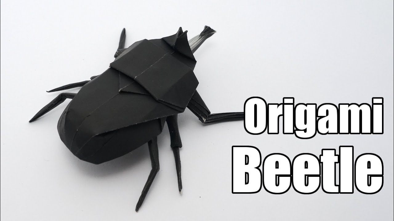 hight resolution of origami beetle jo nakashima