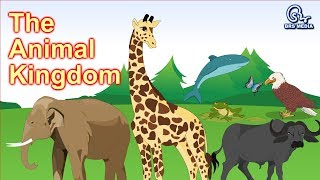 The Animal Kingdom | Animal Classification |  Classifying Animals | Class 4 | Hd Video