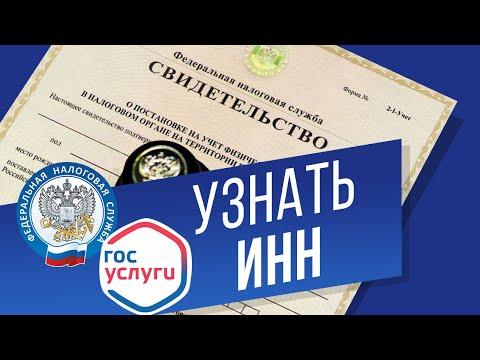 Как узнать инн по паспорту официальный сайт налоговой службы рф