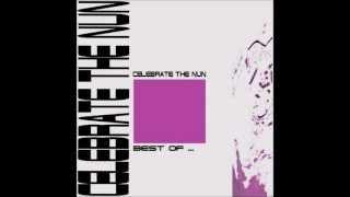 07-Celebrate The Nun - patience (by DJ VF)