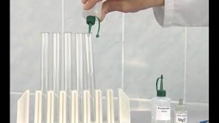 Основные классы неорганических соединений. Опыт 1. Взаимодействие основного оксида с водой