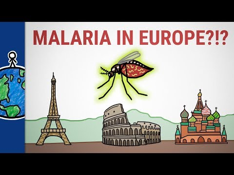 Why Malaria Isn't Just a Tropical Disease