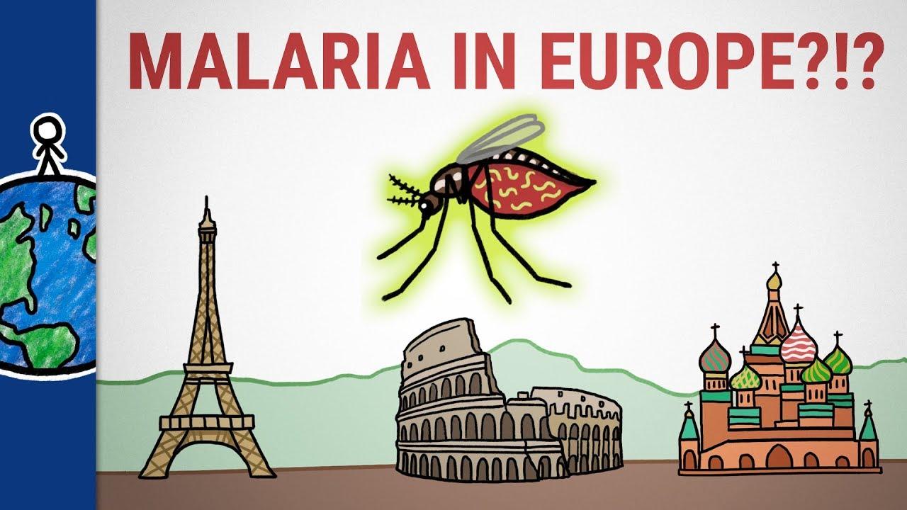 a malária plazmodium fejlődési ciklusának leírása)