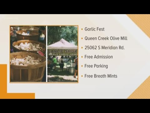 Garlic Festival at Queen Creek Olive Mill
