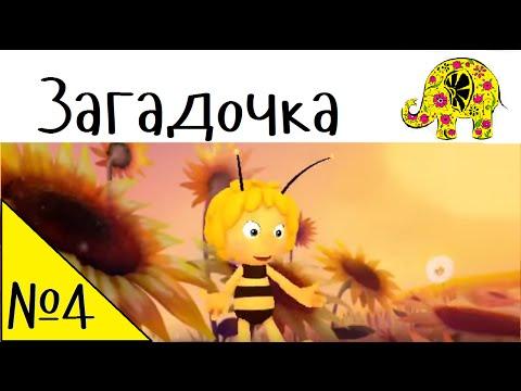 Детская загадка от Пчелки Майи. Осенние загадки про осень