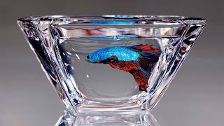 Artists Hyper-Realistic Paintings Of Animals