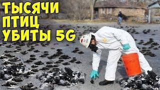 Вот Почему 5G Опасен