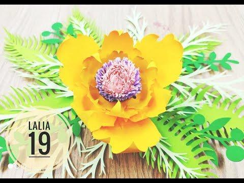 Lalia 19 cardstock DIY Paper flower backdrop