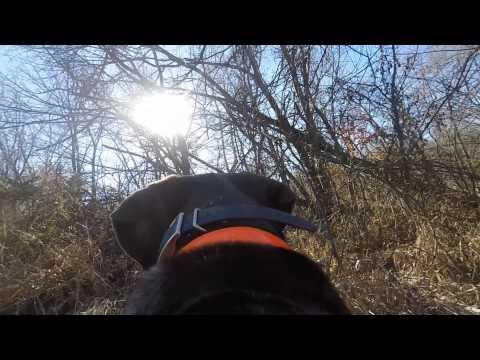 GoPro Hero 4 Black and Hunter