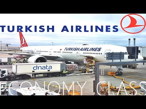 TURKISH AIRLINES ECONOMY EXPERIENCE *Directors Cut*