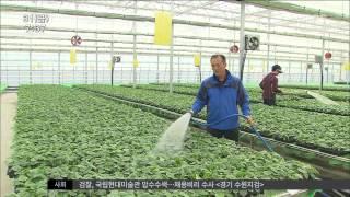 [뉴스투데이]농촌진흥청, 시설하우스 난방시설 개발