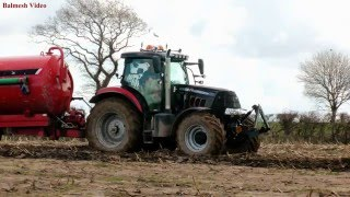 FOUR Tractors on the Muck - incl. the Black Puma!