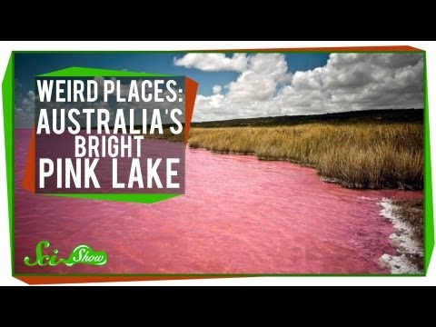 Weird Places Australias Bright Pink Lake