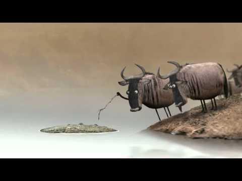 Антилопы и крокодил мультфильм