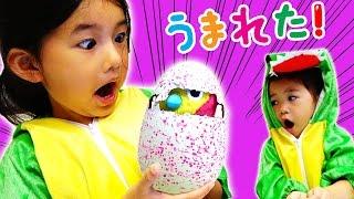 世界初!!タマゴから生まれる!『うまれて!ウーモ』孵化させて育てたよ!おもちゃ himawari-CH thumbnail
