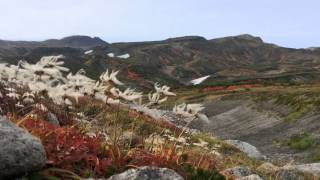 2014年 日本一早い紅葉 黒岳 by mabuh1 on YouTube