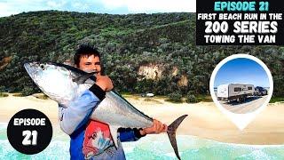DOUBLE ISLAND BEACH CAMṖING trip | 200 SERIES LANDCRUISER towing the van | FISHING | SURFING - Ep 21
