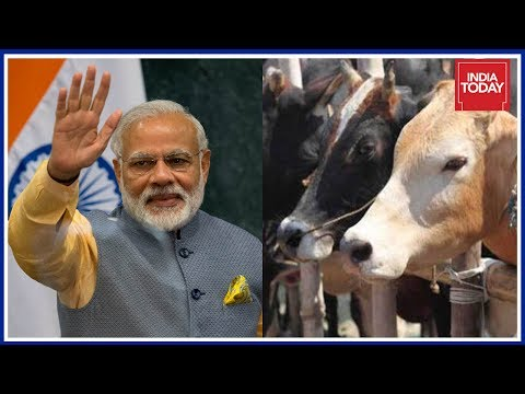 Will PM's Assurance About Cow Vigilantes Pave Way For Smooth Parliament Session?