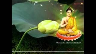 vincent buddha song da bei zhou
